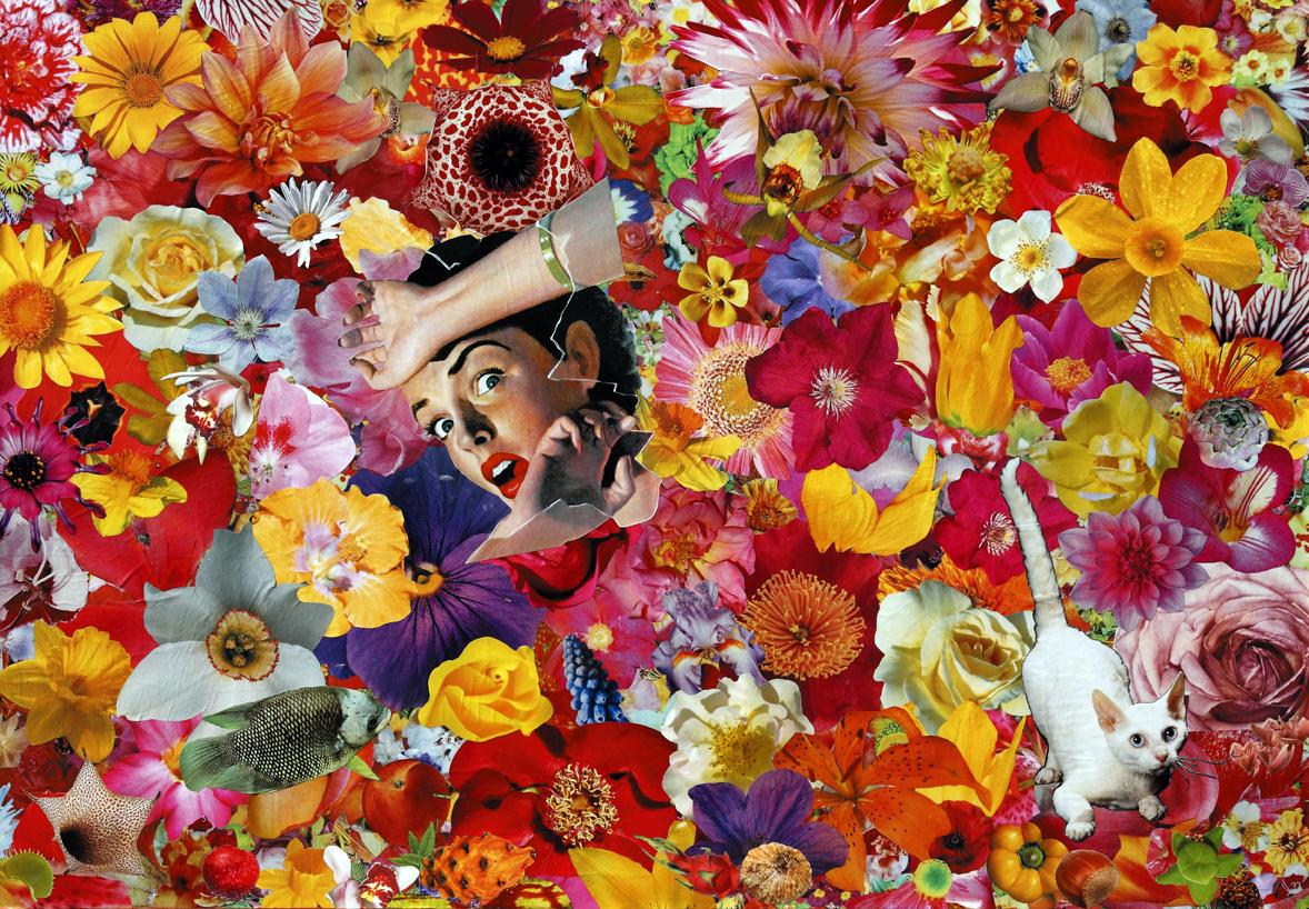 Una visita inaspettata 2009 collage on canvas 70x100